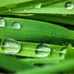 天然セラミド化粧品は敏感肌・アトピー肌に保湿効果抜群のワケ